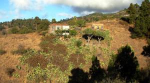 Auf La Palma gibt es atemberaubende Wohnmöglichkeiten, aber auch trockenes Land. Brennt es, dann brennt es.