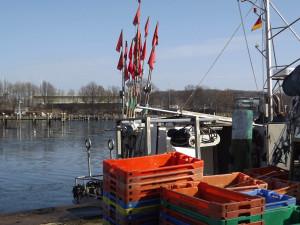 Fischerhafen in Lauterbach