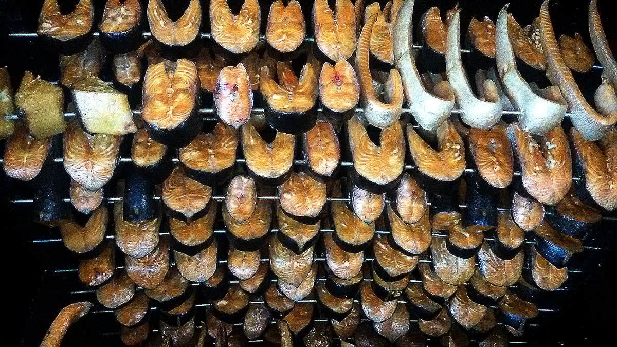 Ostseefisch superfrisch! Kannst Du gerade nicht? DA KOMMT ER EBEN ZU DIR – direkt von Rügen – ganz frisch auf den Tisch.
