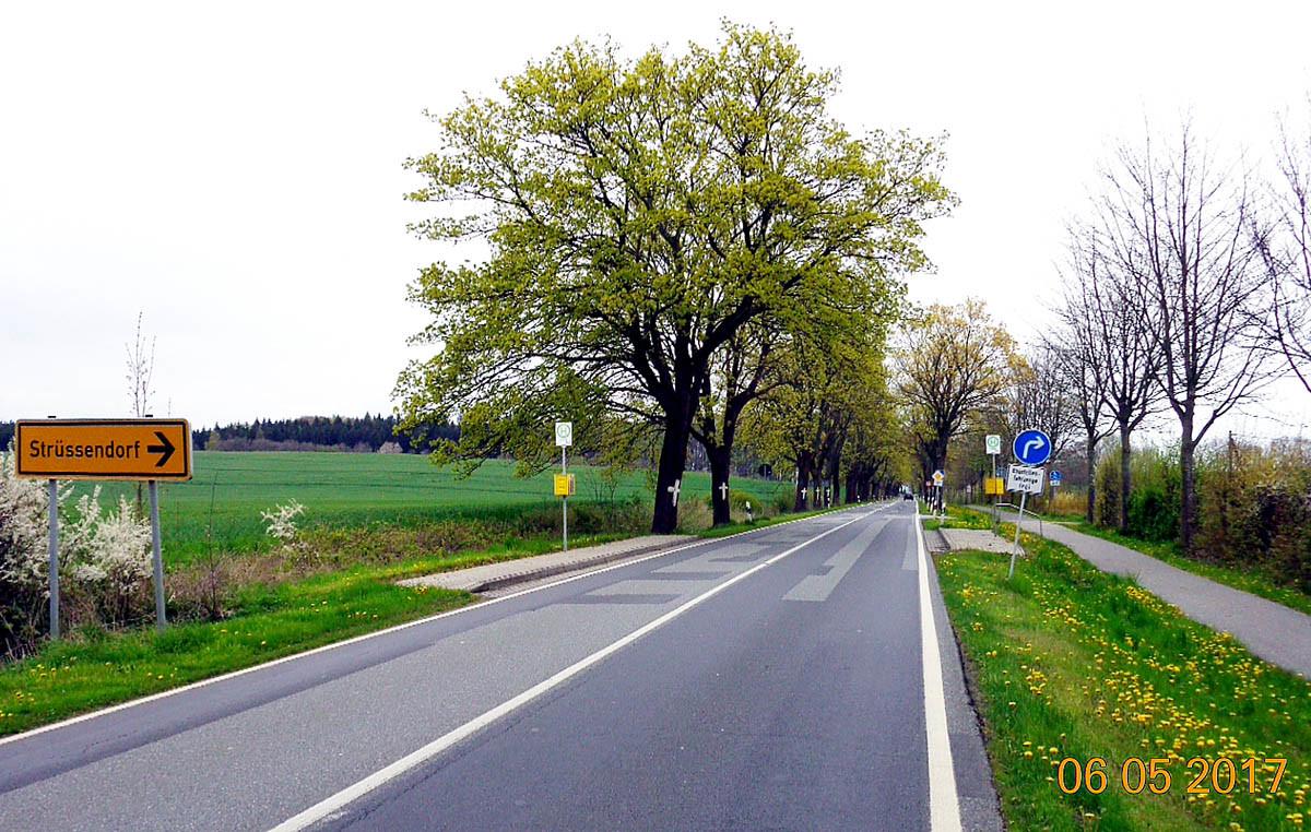 Rügen ist auf dem Holzweg.    Update # 03 – Videos