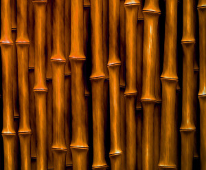 Bambus_03