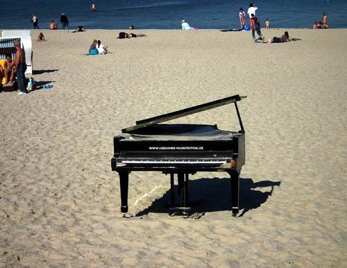 In welchem Paradies auf Usedom ist der Urlaub perfekt?