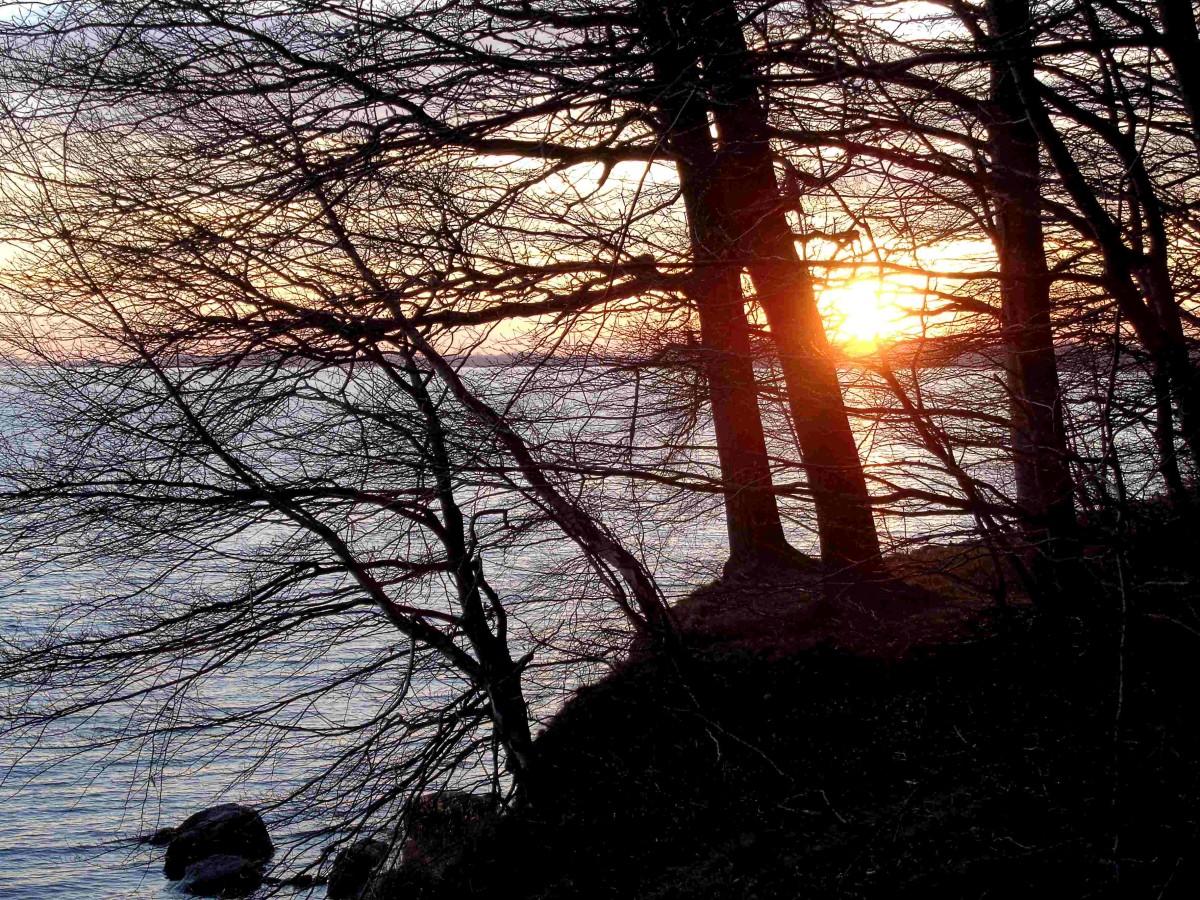 """Insel Rügen: Der """"Pfad der Muse und Erkenntnis"""" (1) – Lets go to the Goor!"""