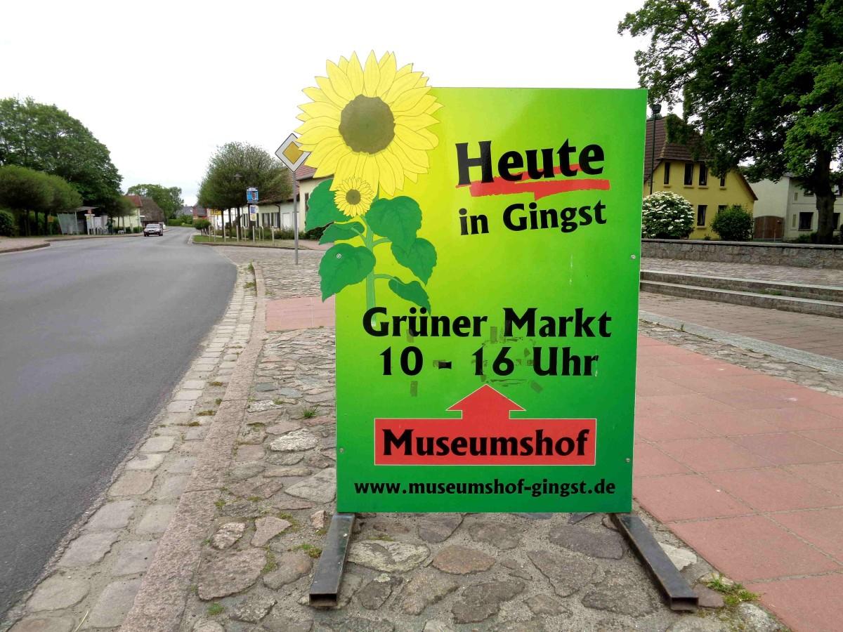 """Ein Geheimtipp für jeden Samstag: Der """"Grüne Markt"""" in Gingst"""